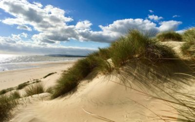 Sandy beaches – We've got Some Hidden Gems to Share with You.