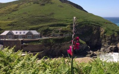 Spotlight On: Smugglers Cove Cottages Portreath, Cornwall
