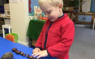 Spotlight on: The Nook Nursery